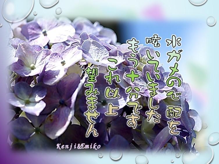 f0214467_09250849.jpg
