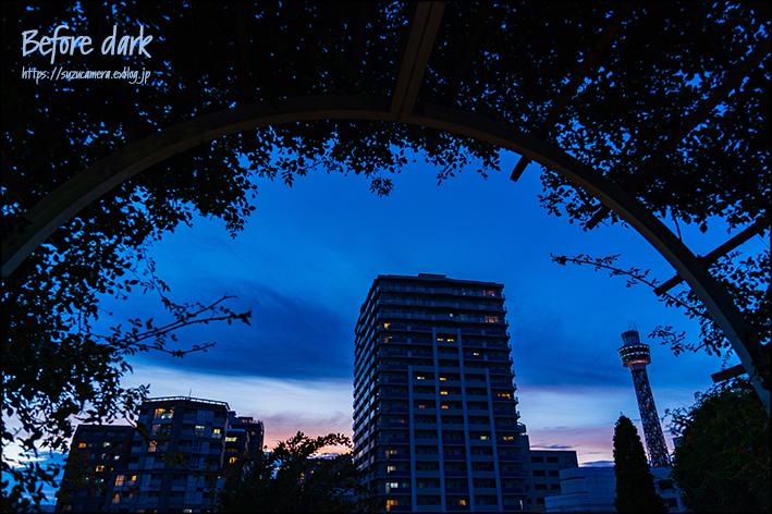 空を追いかけて_f0100215_21463294.jpg