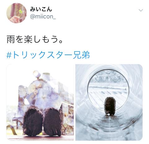 e0176734_17513727.jpg
