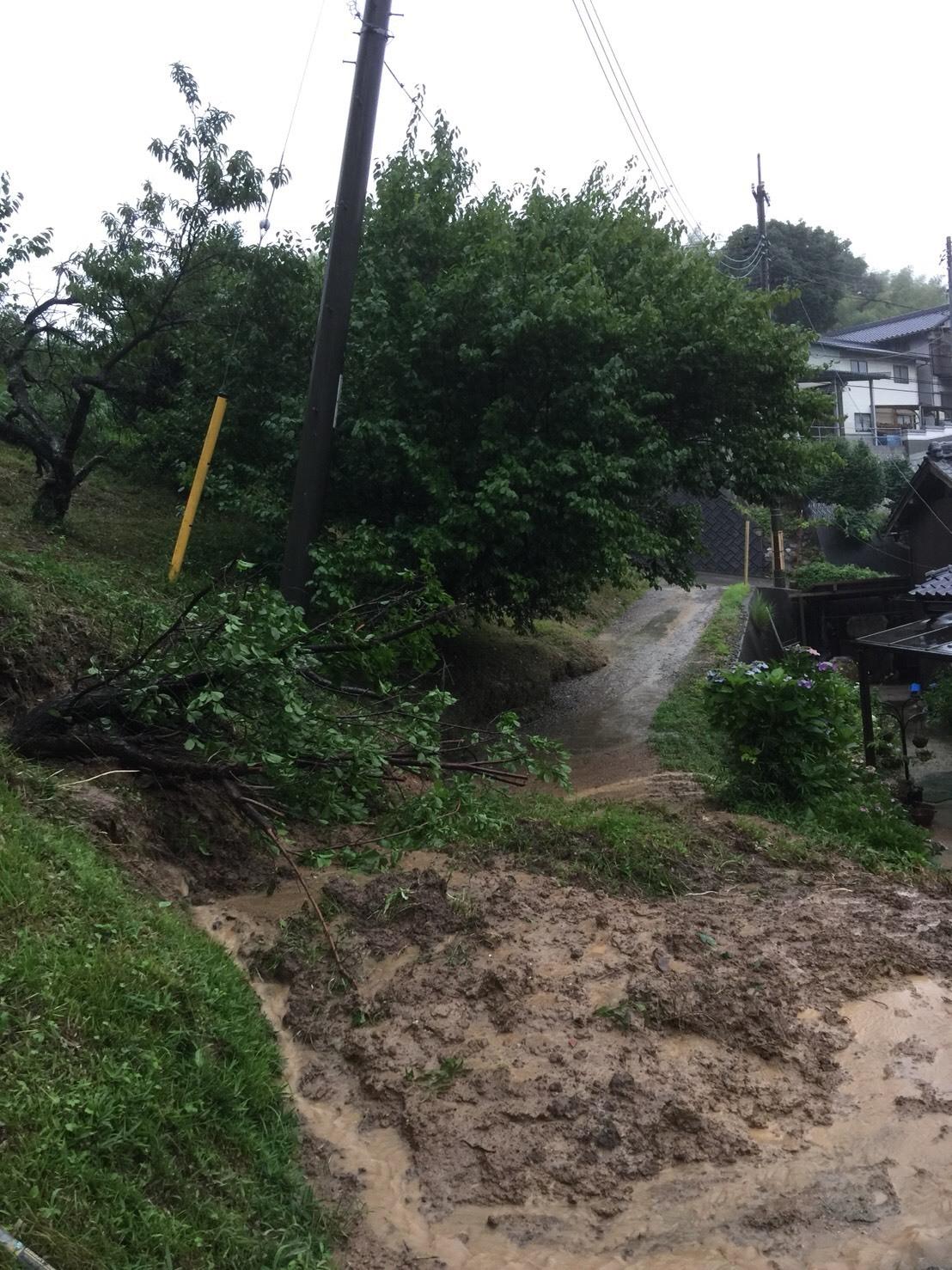 大雨水害に直面した皆様へ〜すぐにできることメモ_c0274374_18480261.jpeg