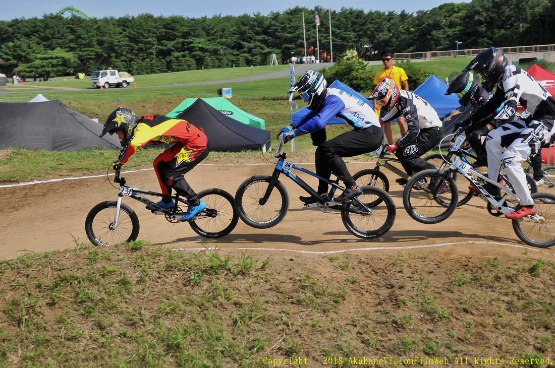 第35回全日本BMX選手権大会 ひたち海浜公園Vol1:男子エリート決勝_b0065730_8482570.jpg