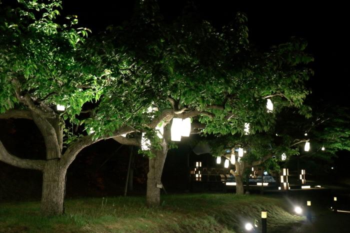 【星野リゾート青森屋/たんげ花見まつり】青森旅行 - 17 -_f0348831_23494165.jpg