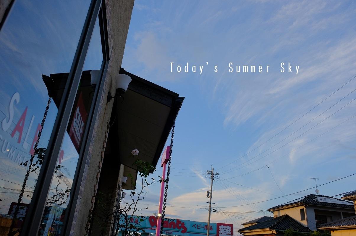 """2018 Summer Style New for Sale!... 7/9mon\""_d0153941_19134884.jpg"