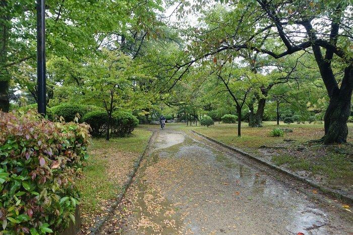 和歌山城公園 和歌山城_c0112559_08134977.jpg