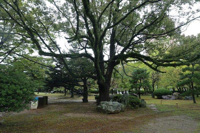 和歌山城公園 和歌山城_c0112559_08151469.jpg