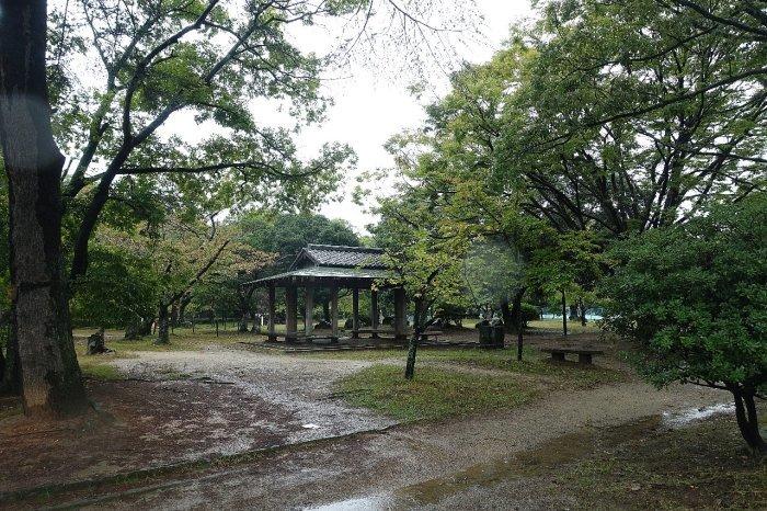 和歌山城公園 和歌山城_c0112559_08155389.jpg