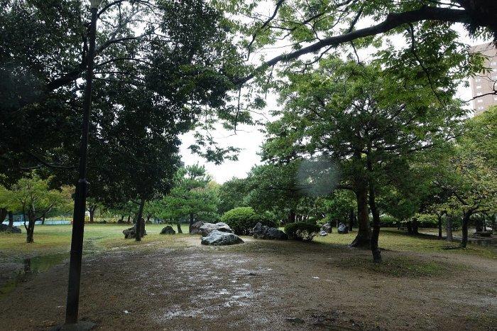 和歌山城公園 和歌山城_c0112559_08164726.jpg
