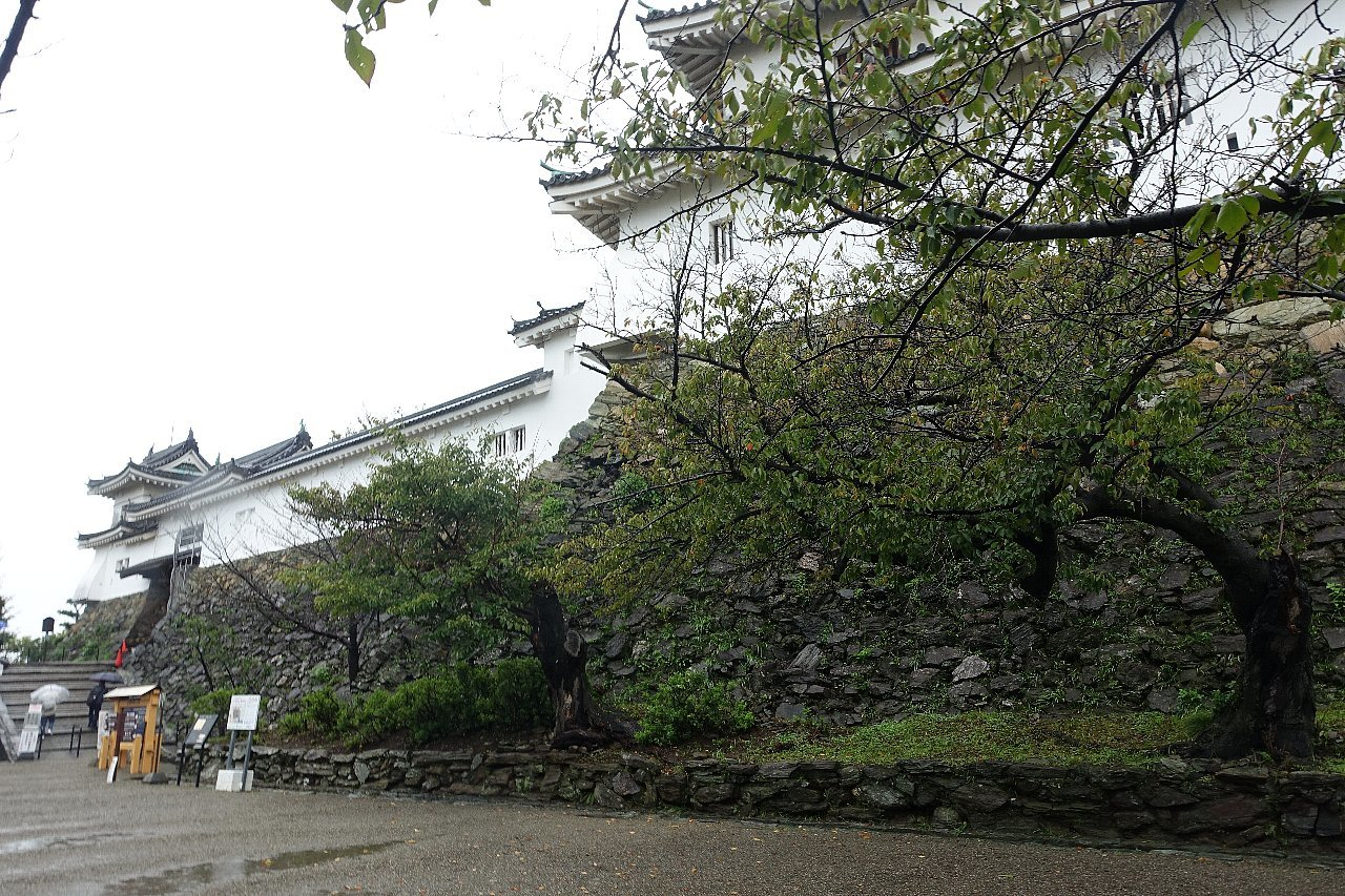 和歌山城公園 和歌山城_c0112559_08365496.jpg