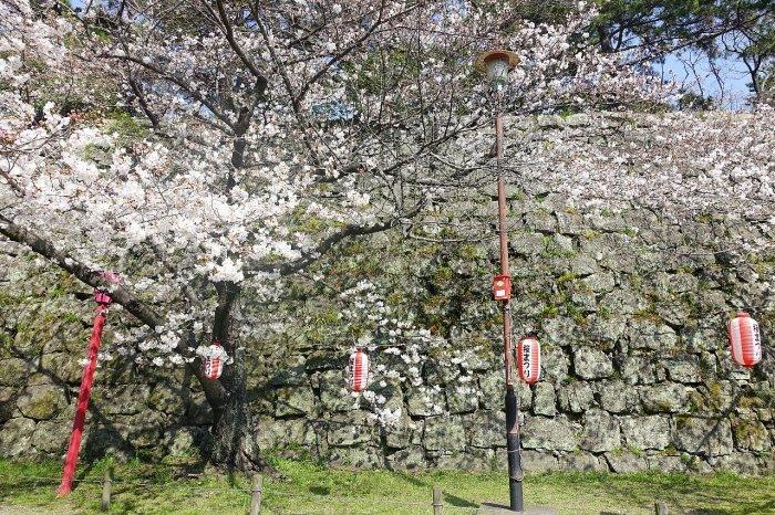 和歌山城公園 和歌山城_c0112559_08490130.jpg