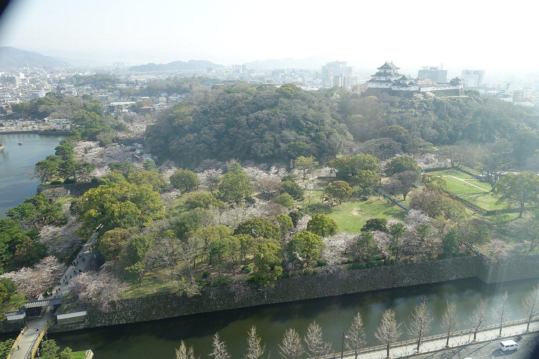 和歌山城公園 和歌山城_c0112559_08533608.jpg