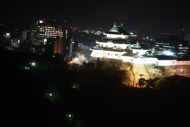 和歌山城公園 和歌山城_c0112559_08544101.jpg