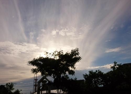 "\""end of rainy season\""_d0355179_18170691.jpg"