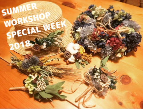 SUMMER WORKSHOP SPECIAL WEEK 2018_c0069389_17431408.png