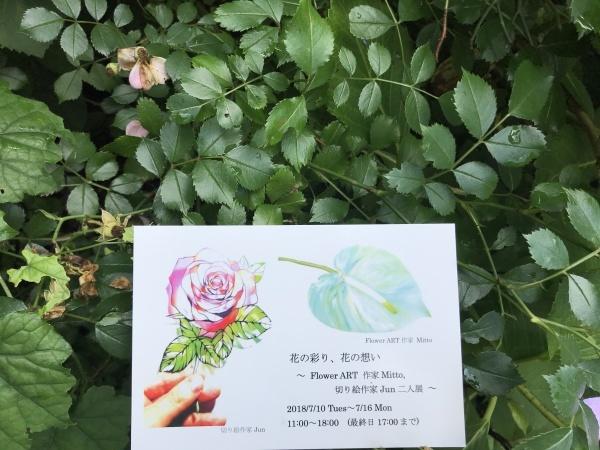 花の彩り、花の想い_a0141072_11161310.jpeg