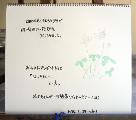 花冠_b0364195_14255312.jpg