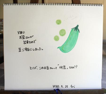 えんどう豆ともうします_b0364195_14283708.jpg