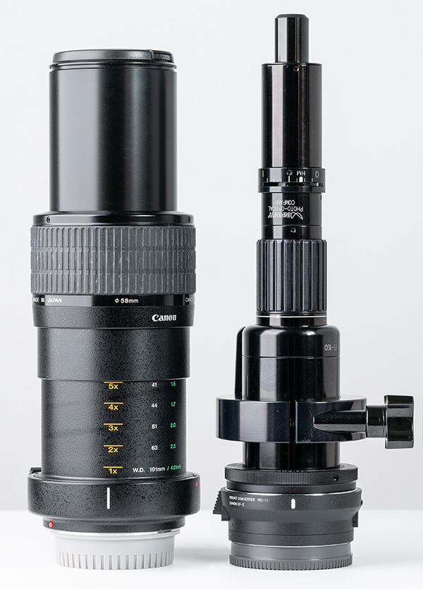 2018/07/11 TS-160 vs CANON MP-E65mm_b0171364_15341465.jpg