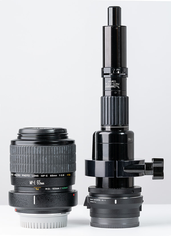 2018/07/11 TS-160 vs CANON MP-E65mm_b0171364_16145321.jpg
