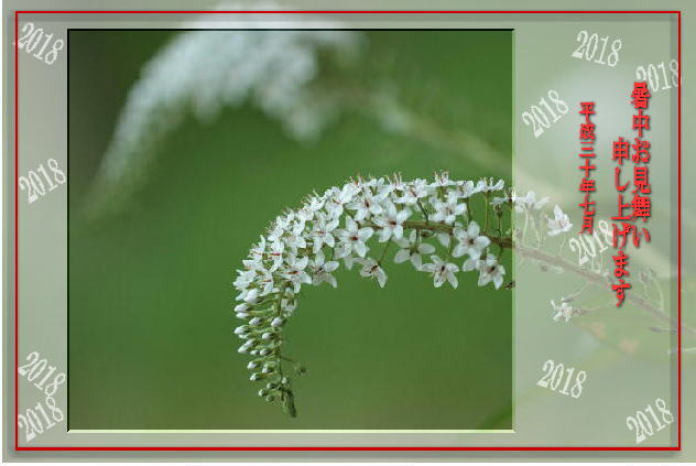 f0164592_20111545.jpg
