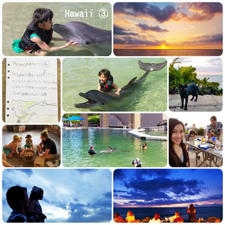 Hawaii…♡3♡ (イルカさんとサンセットディナー)_d0224894_17133798.jpg