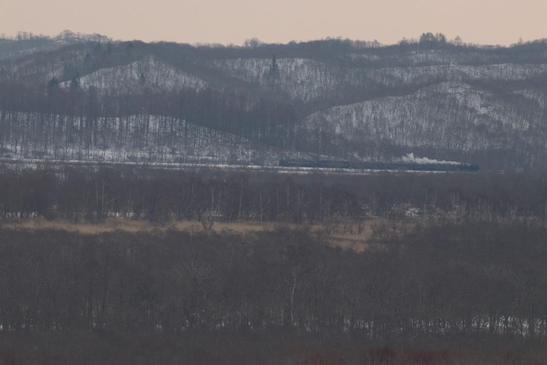 荒天の予感 - 釧網線・2018年冬 -_b0190710_21261769.jpg