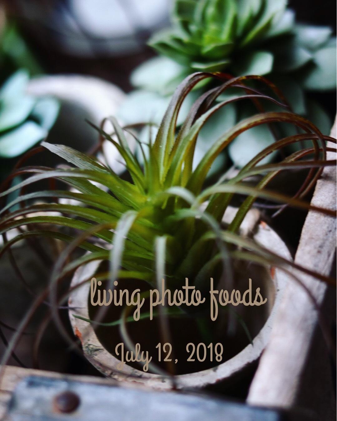 living photo foods 教室第5回目_c0366722_17500395.jpeg