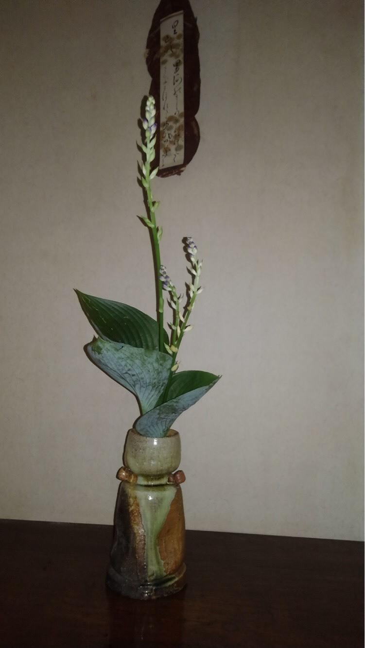 邸内に生けられた花 7月_d0344754_09371852.jpg