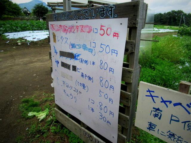 セルフ採り野菜&ラベンダー畑 @小諸_f0236260_23575110.jpg