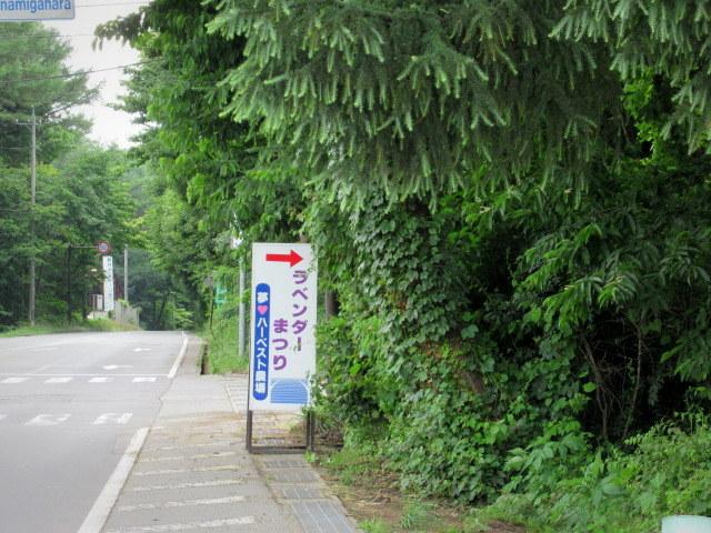 セルフ採り野菜&ラベンダー畑 @小諸_f0236260_23591198.jpg