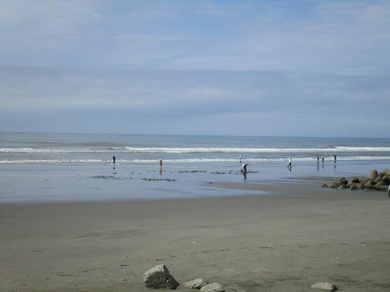 82日目【神栖−千葉市】やっと海が見えました!_e0201281_20004240.jpg