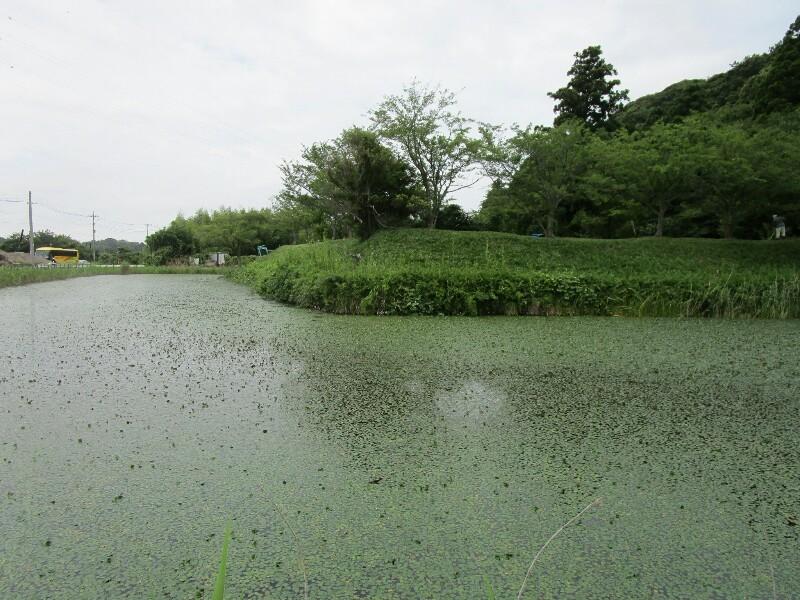 82日目【神栖−千葉市】やっと海が見えました!_e0201281_20013540.jpg