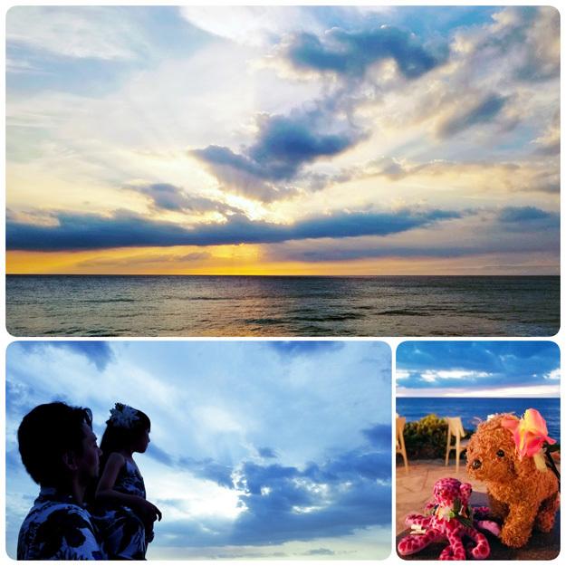 Hawaii…♡3♡ (イルカさんとサンセットディナー)_d0224894_10374895.jpg