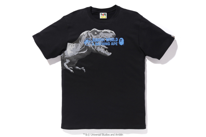 A BATHING APE® x JURASSIC WORLD™_a0174495_12203529.jpg