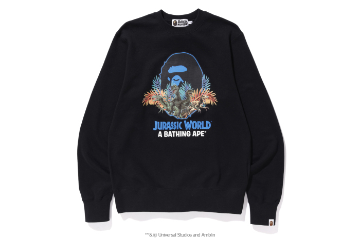 A BATHING APE® x JURASSIC WORLD™_a0174495_12250855.jpg