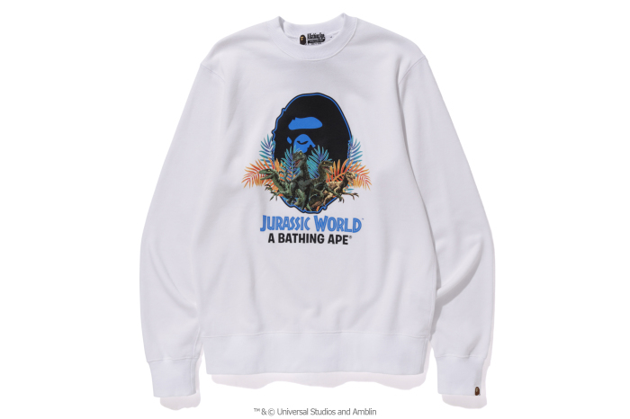 A BATHING APE® x JURASSIC WORLD™_a0174495_12253551.jpg