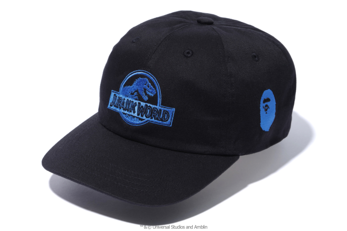A BATHING APE® x JURASSIC WORLD™_a0174495_12355384.jpg