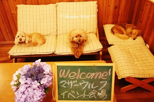 マザーウルフ ゲストハウス・パーティー@伊豆高原 レポート♪_e0191026_18270367.jpg