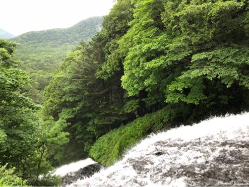 週末温泉プチ旅行☆早朝の湯ノ湖散歩♪_f0207146_20351153.jpg