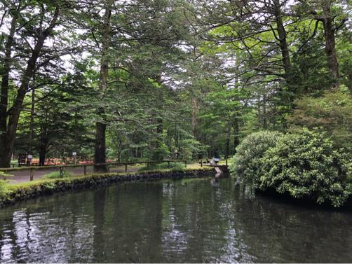 週末温泉プチ旅行☆ゆ宿 美や川の朝食♪_f0207146_20385751.jpg