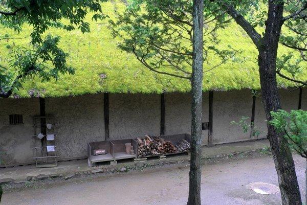 雨の民家園(6)_e0129750_00091757.jpg