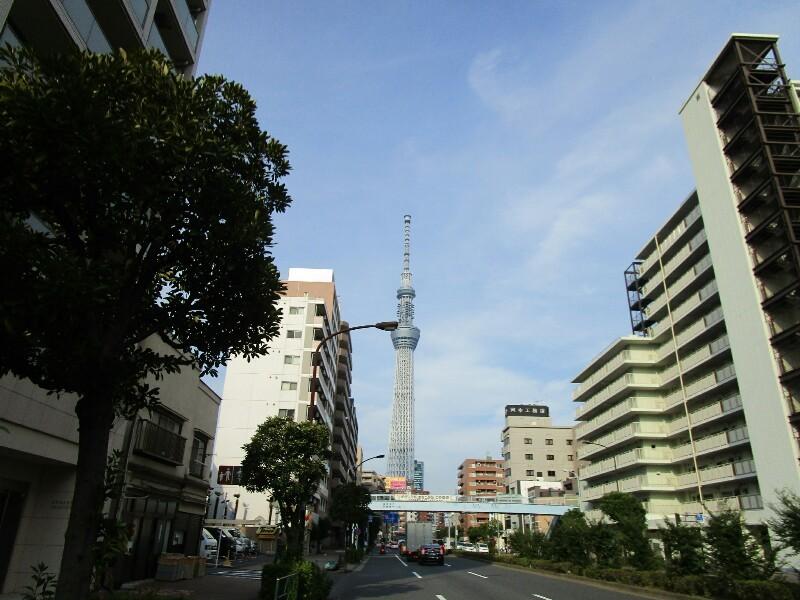 83 日目【千葉−東京①】都会のジャングルは大変です!_e0201281_23034580.jpg
