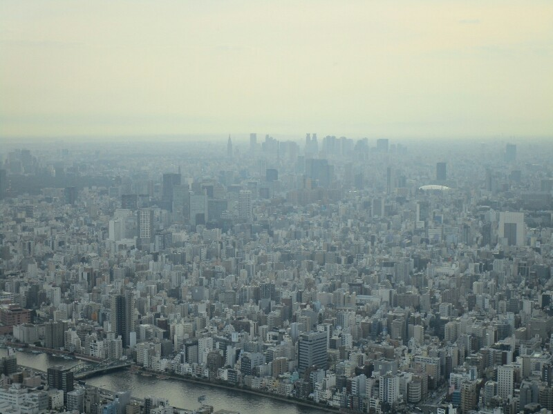 83 日目【千葉−東京①】都会のジャングルは大変です!_e0201281_23044370.jpg