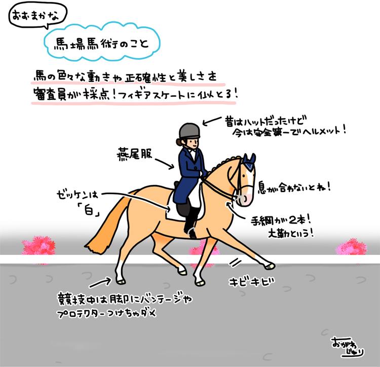 馬場馬術を見に行こう!_a0093189_08244024.jpg