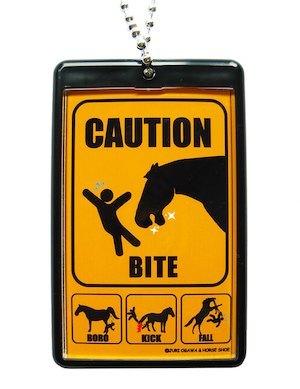 馬場馬術を見に行こう!_a0093189_08244479.jpg