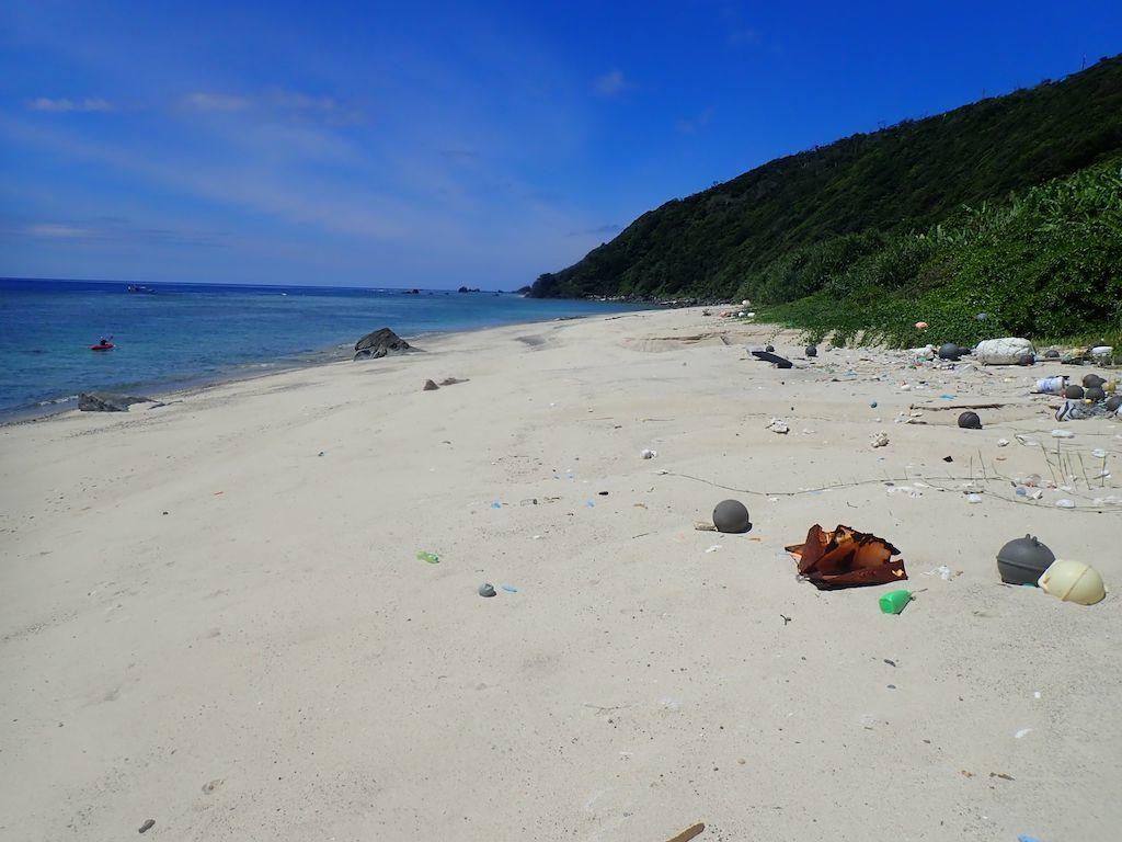6/26 奄美市名瀬陸路の無い浜のウミガメ調査_a0010095_22463267.jpg