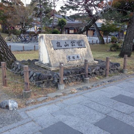 京都 嵐山公園でお茶_e0303431_17452177.jpg