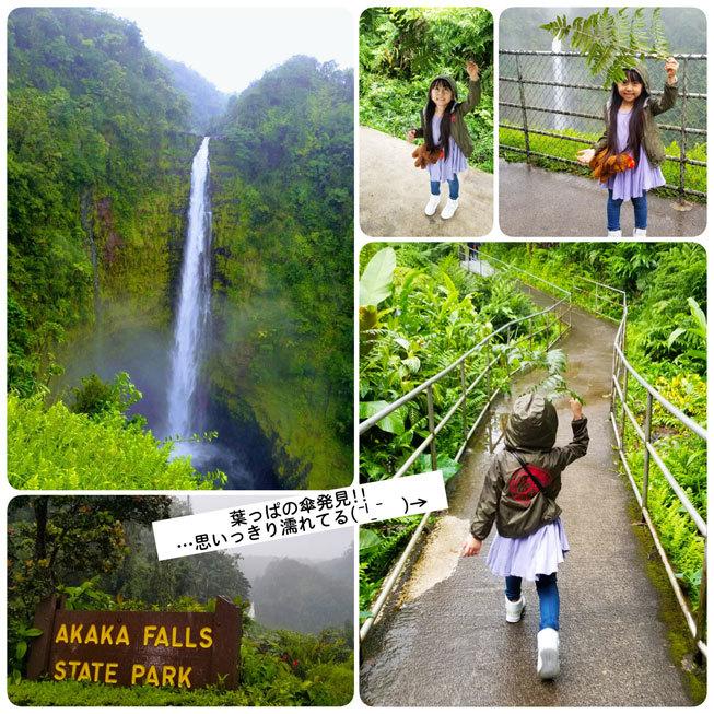 Hawaii…♡4♡ (1日ツアー・ストロベリームーンの星空観測)_d0224894_00522977.jpg