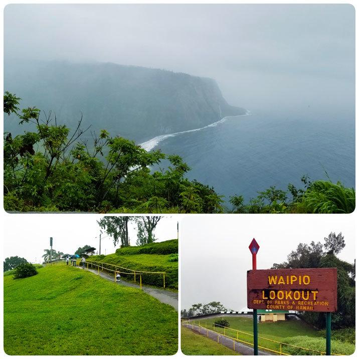 Hawaii…♡4♡ (1日ツアー・ストロベリームーンの星空観測)_d0224894_01231314.jpg