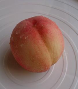 桃が成りました(岡)_f0354314_22243757.png