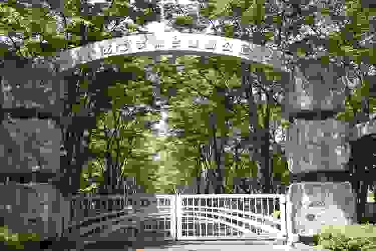 福島市 「吾妻総合運動公園」内に自生するヤマユリ_d0106628_15393955.jpg